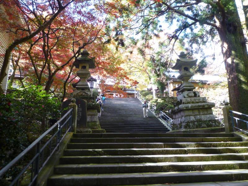 f:id:sasameyuki47:20111122115239j:image:w360