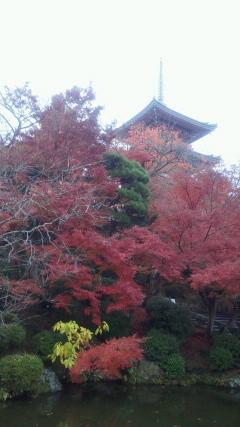 f:id:sasameyuki47:20111203122600j:image