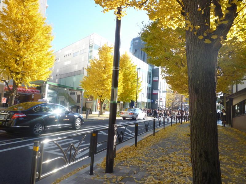 f:id:sasameyuki47:20111213132606j:image:w360