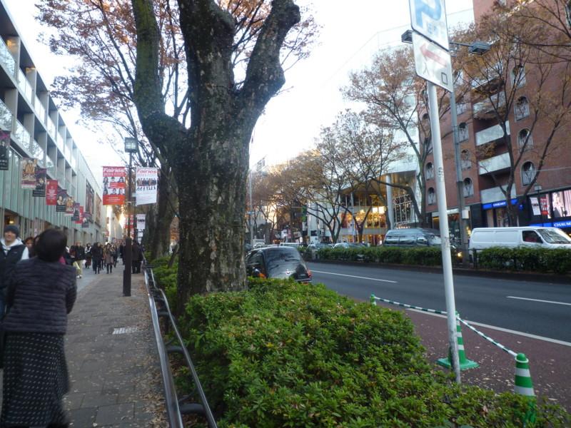 f:id:sasameyuki47:20111213152814j:image:w360
