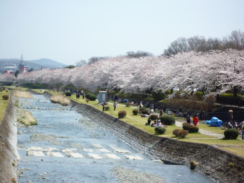 f:id:sasameyuki47:20120409121652j:image:w360