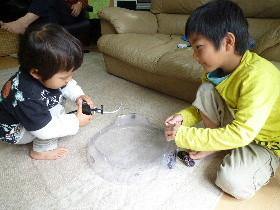 f:id:sasameyuki47:20120415115619j:image:right