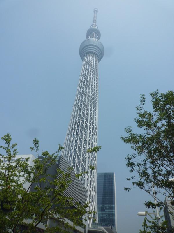 f:id:sasameyuki47:20120727124540j:image:w360