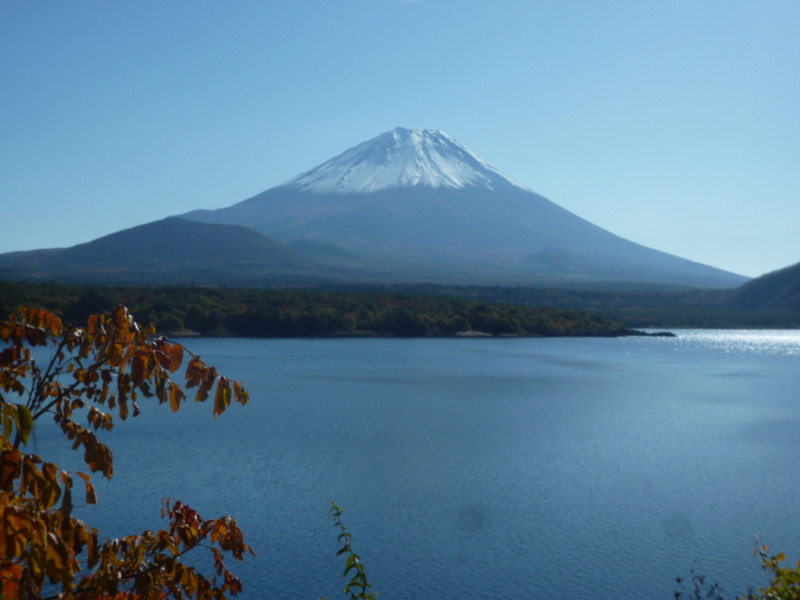f:id:sasameyuki47:20121108095327j:image:w360