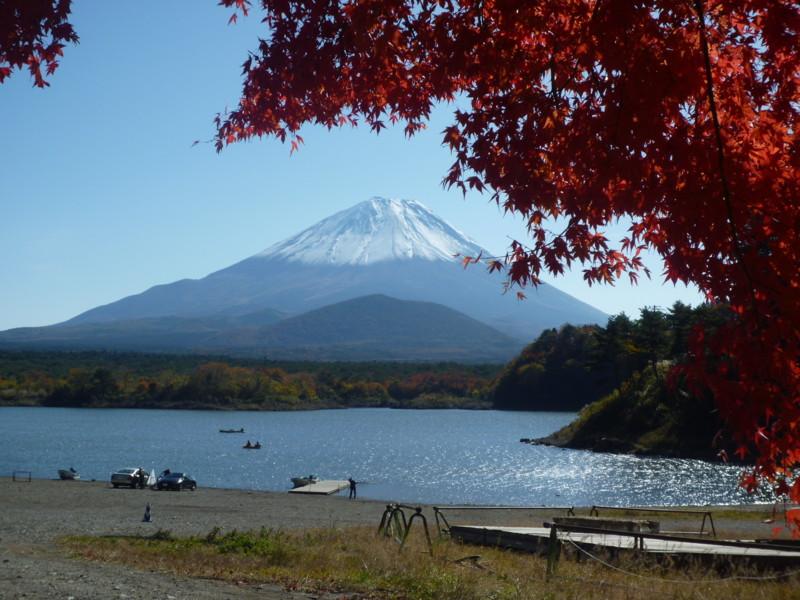 f:id:sasameyuki47:20121108102327j:image:w360
