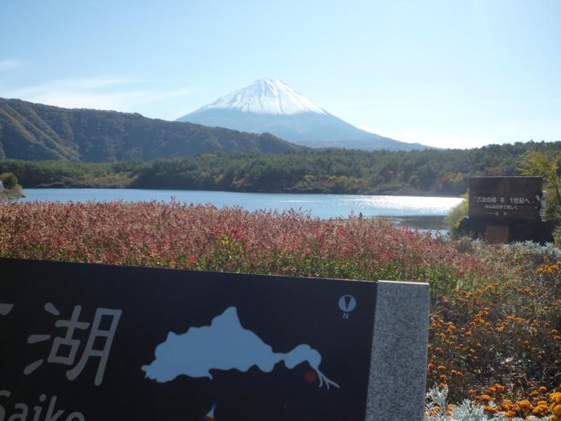 f:id:sasameyuki47:20121108105649j:image:w360