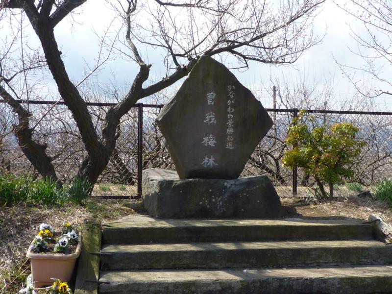 f:id:sasameyuki47:20130221115020j:image:w360
