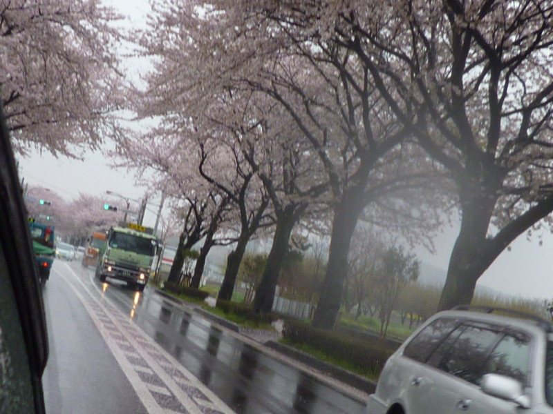 f:id:sasameyuki47:20130402094744j:image:w360