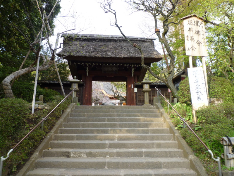 f:id:sasameyuki47:20130404160721j:image:w360