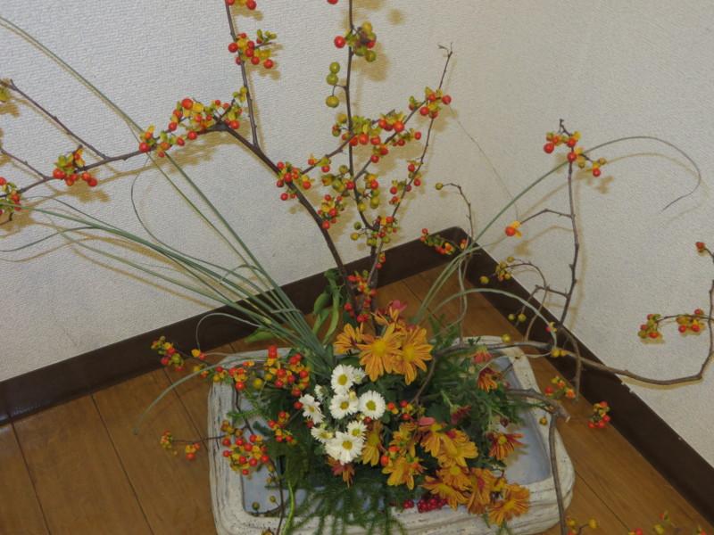 f:id:sasameyuki47:20131110113814j:image:w360