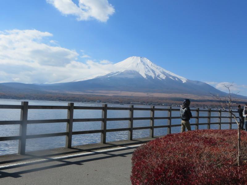 f:id:sasameyuki47:20131116111245j:image:w360