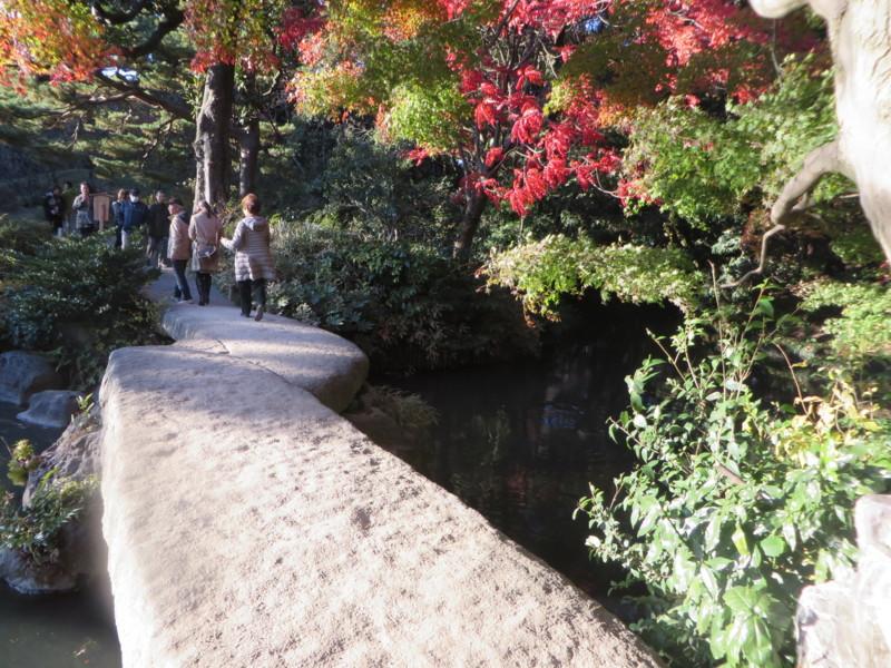 f:id:sasameyuki47:20131129151214j:image:w360