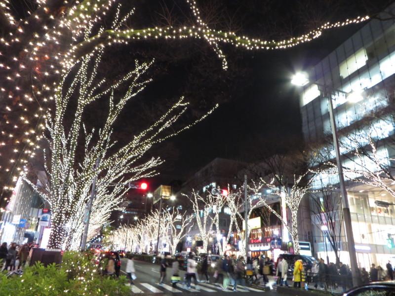 f:id:sasameyuki47:20131220173035j:image:w640