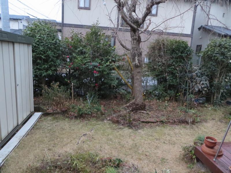 f:id:sasameyuki47:20140204164328j:image:w360