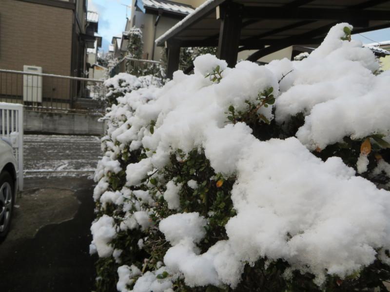 f:id:sasameyuki47:20140205071105j:image:w360
