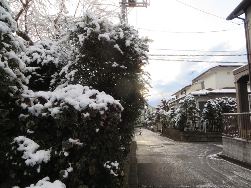 f:id:sasameyuki47:20140205071125j:image:w360