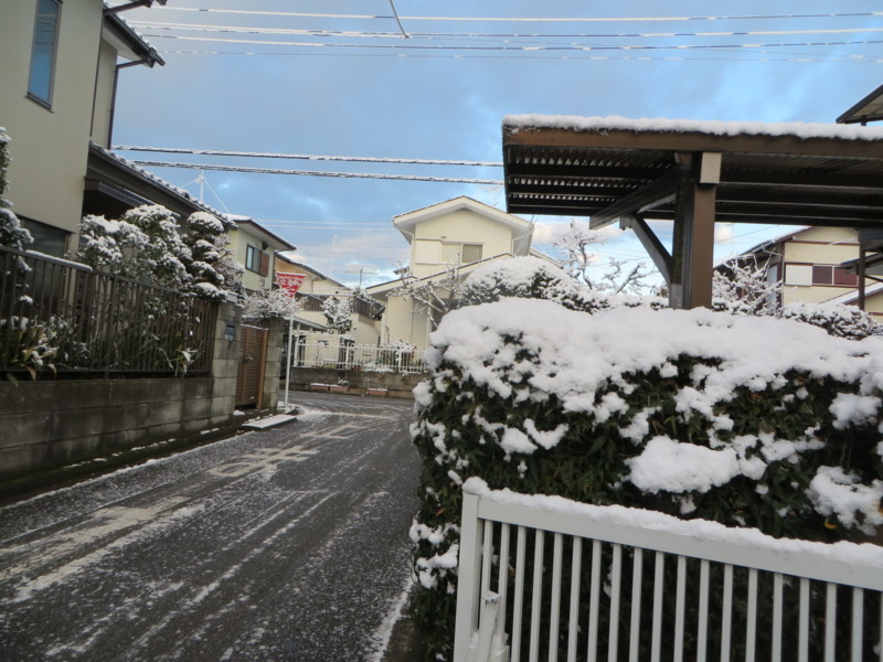 f:id:sasameyuki47:20140205071139j:image:w360