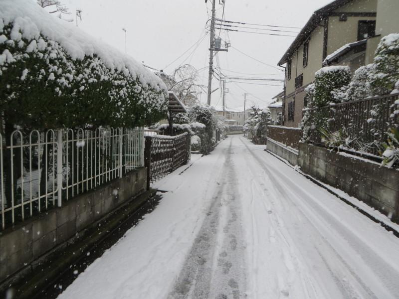 f:id:sasameyuki47:20140208102933j:image:w360