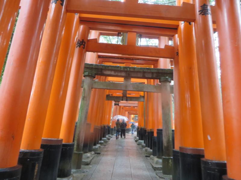 f:id:sasameyuki47:20140326124941j:image:w640
