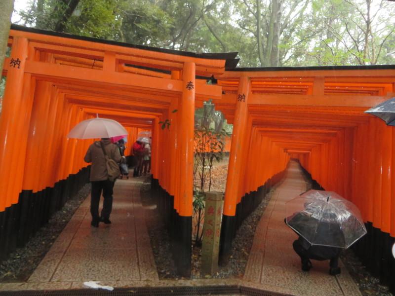 f:id:sasameyuki47:20140326125042j:image:w360