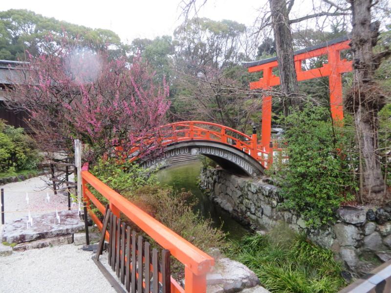 f:id:sasameyuki47:20140326160211j:image:w640