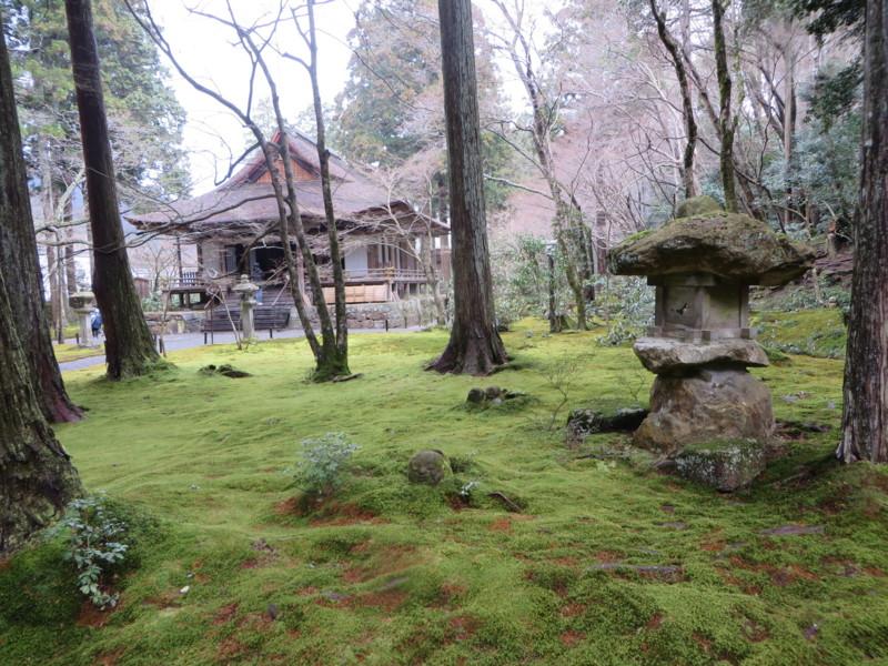 f:id:sasameyuki47:20140327101058j:image:w640