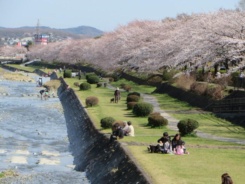 f:id:sasameyuki47:20140331142321j:image:w640