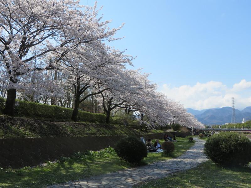 f:id:sasameyuki47:20140404141615j:image:w640