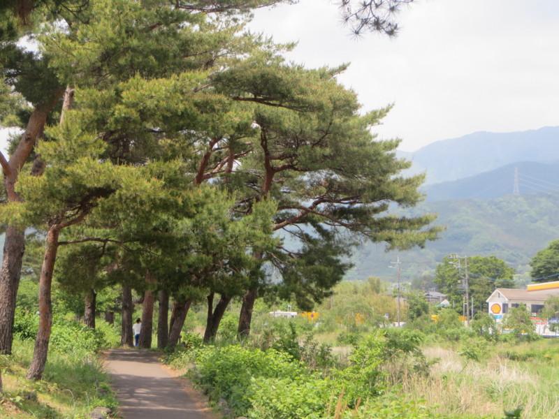f:id:sasameyuki47:20140519114246j:image:w360