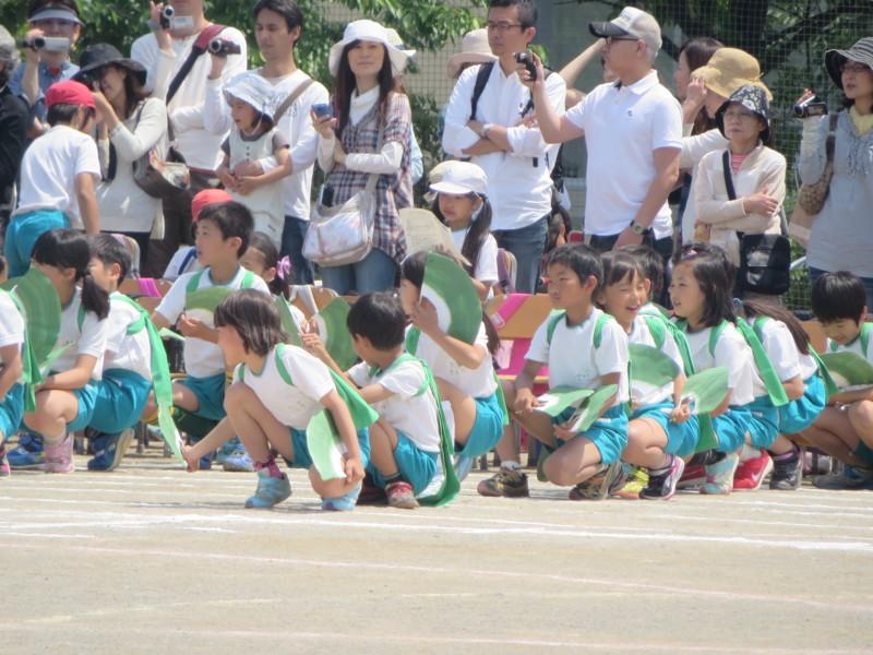 f:id:sasameyuki47:20140524130133j:image:w360