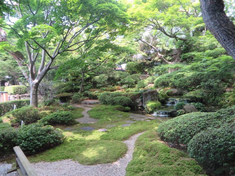 f:id:sasameyuki47:20140530132057j:image:w360
