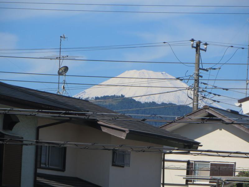 f:id:sasameyuki47:20141016084206j:image:w360