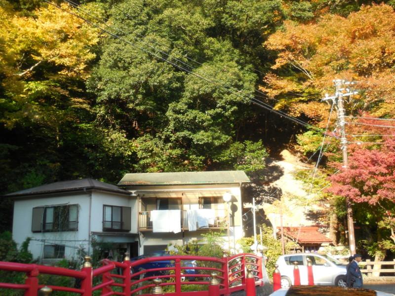 f:id:sasameyuki47:20141122144654j:image:w360