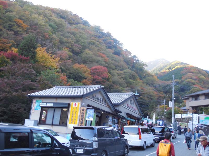 f:id:sasameyuki47:20141122145455j:image:w360