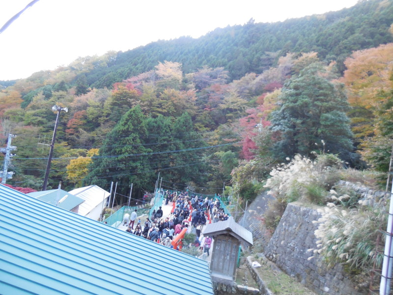 f:id:sasameyuki47:20141122153820j:image:w360