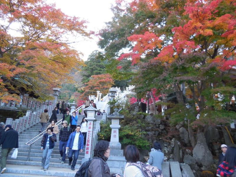 f:id:sasameyuki47:20141122155337j:image:w640