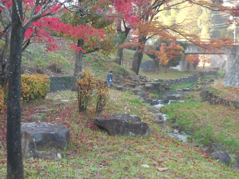 f:id:sasameyuki47:20141129152450j:image:w360
