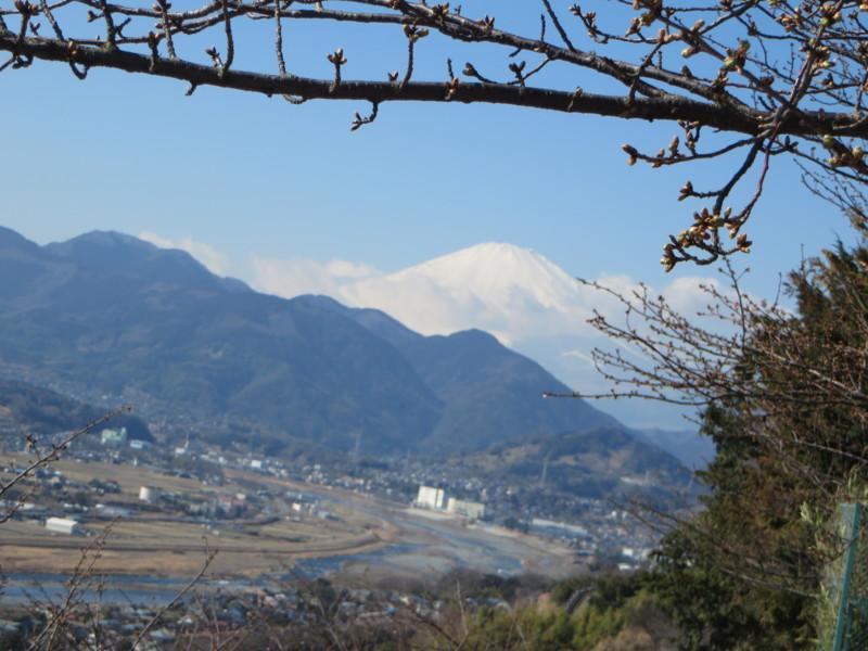 f:id:sasameyuki47:20150203114521j:image:w360