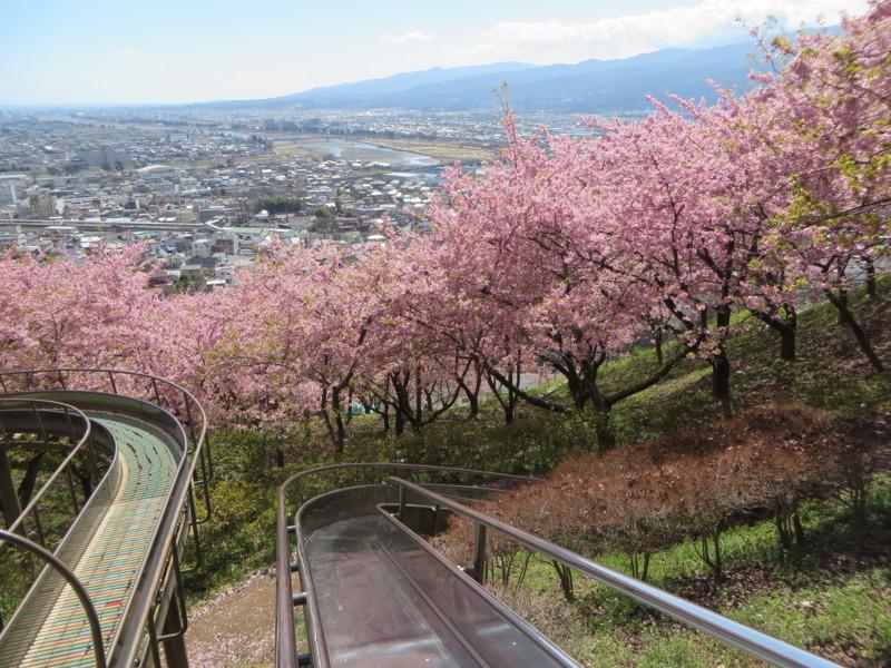 f:id:sasameyuki47:20150311124540j:image:w360