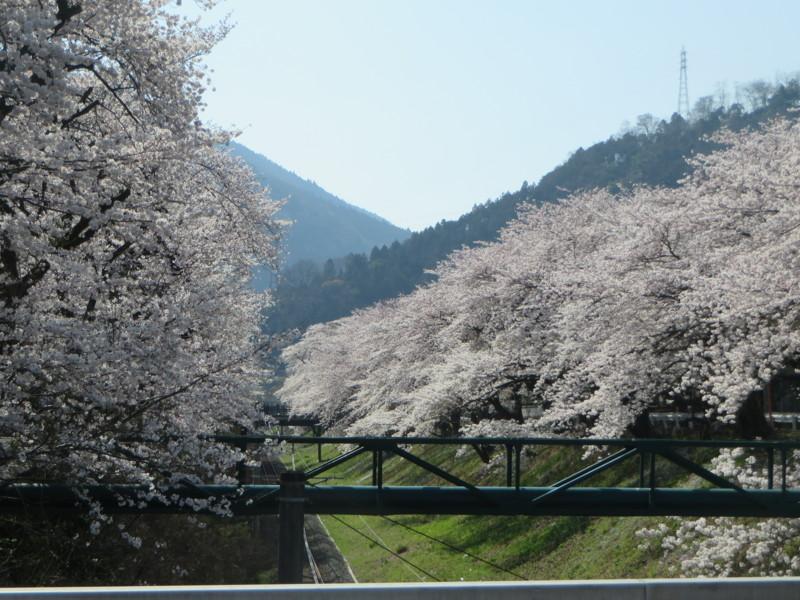 f:id:sasameyuki47:20150331142140j:image:w640
