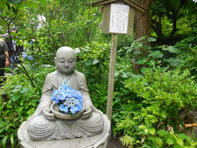 f:id:sasameyuki47:20150618153044j:image:w360