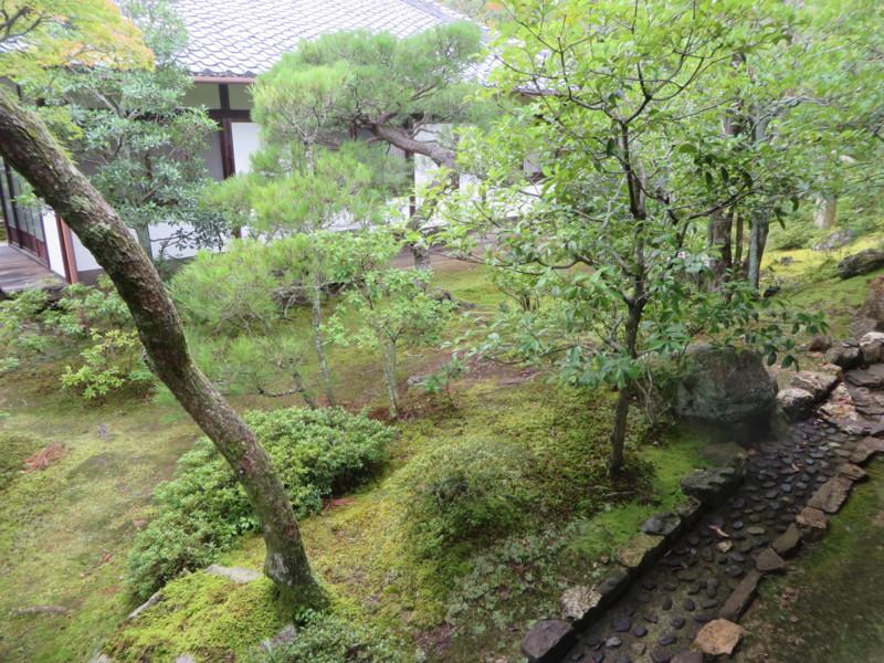 f:id:sasameyuki47:20150719103002j:image:w360