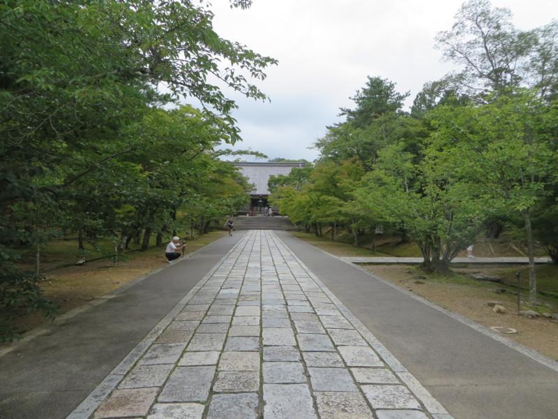 f:id:sasameyuki47:20150719104509j:image:w360
