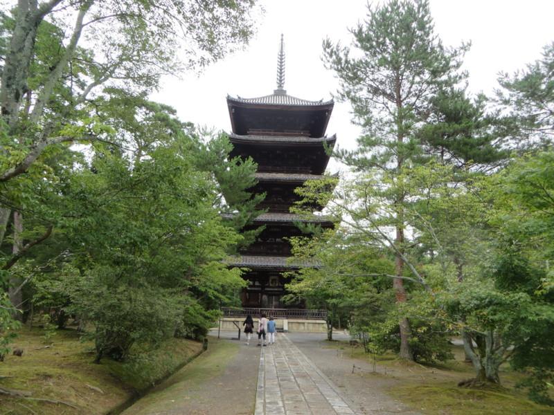 f:id:sasameyuki47:20150719104600j:image:w640