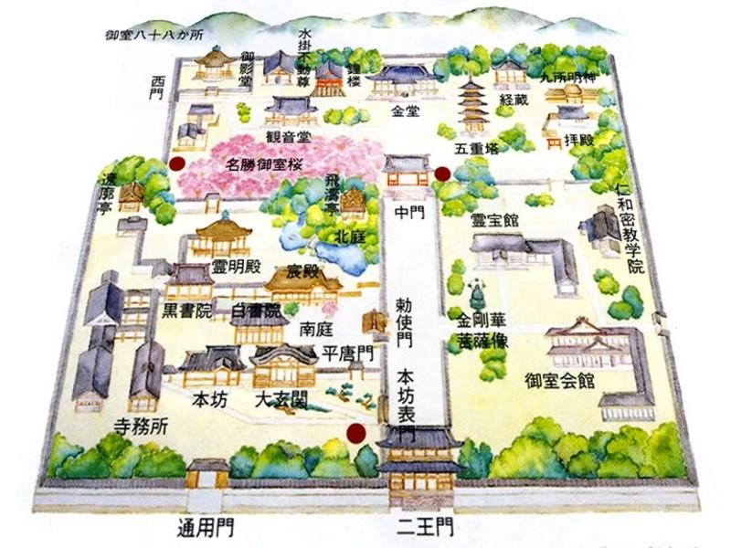 f:id:sasameyuki47:20150723224408j:image:w640