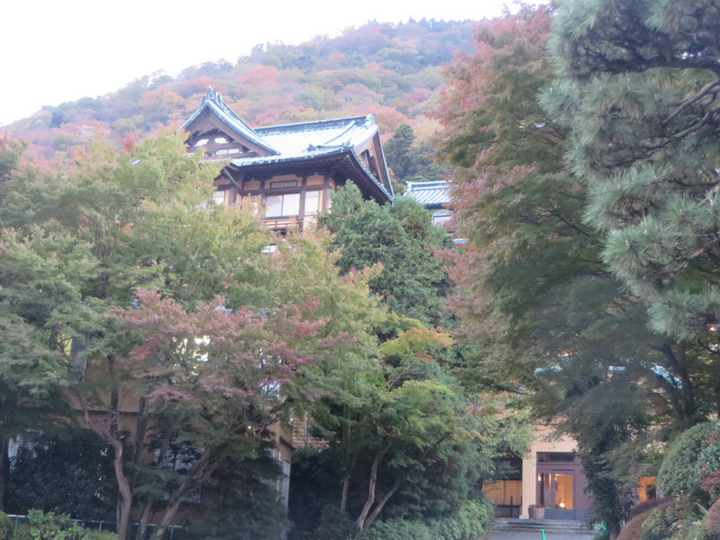 f:id:sasameyuki47:20151106164234j:image:w360