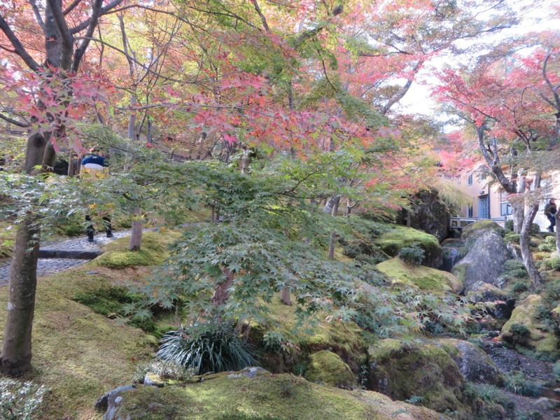 f:id:sasameyuki47:20151107120531j:image:w640