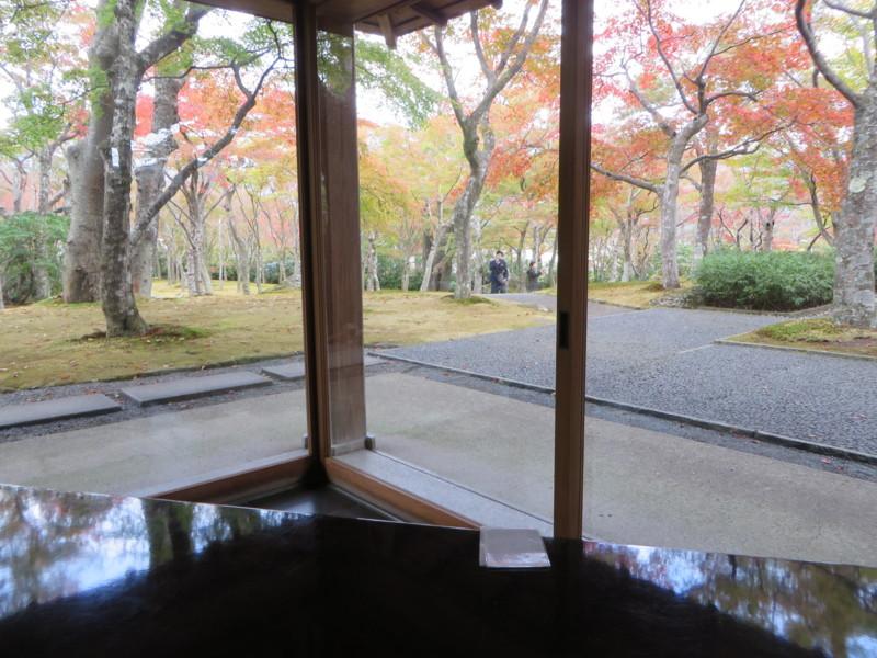 f:id:sasameyuki47:20151107125433j:image:w640