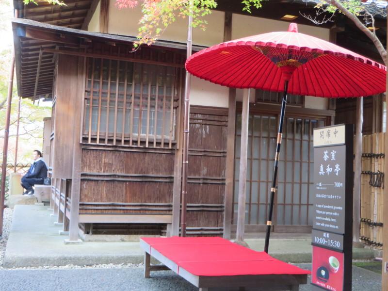 f:id:sasameyuki47:20151107130623j:image:w360