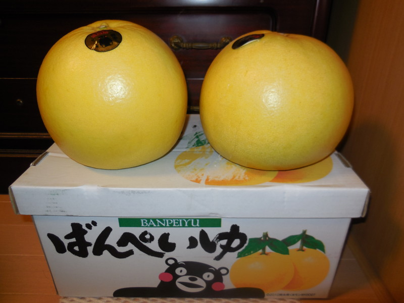 f:id:sasameyuki47:20151229213817j:image:w360